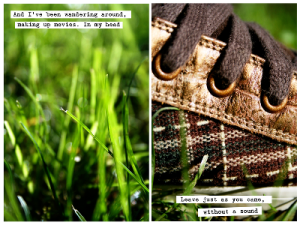 shoes and grasses...