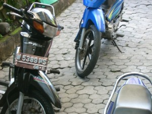 motor ini langsung di bawa dari Sidoarjo