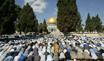 //www.palestinetoday.org